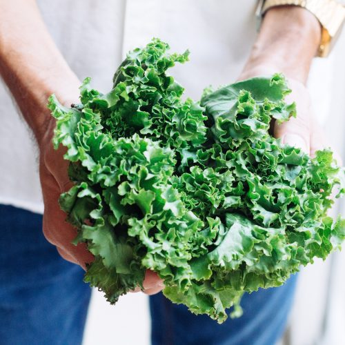 holding Kale